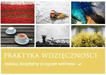program-wellness